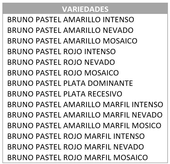 variedades de bruno pastel